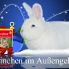 frohe-weihnachten-wegler_0