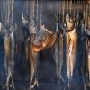 makrelen-raeuchern