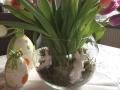 tulpen-ostern